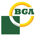BG Automotive Ltd.